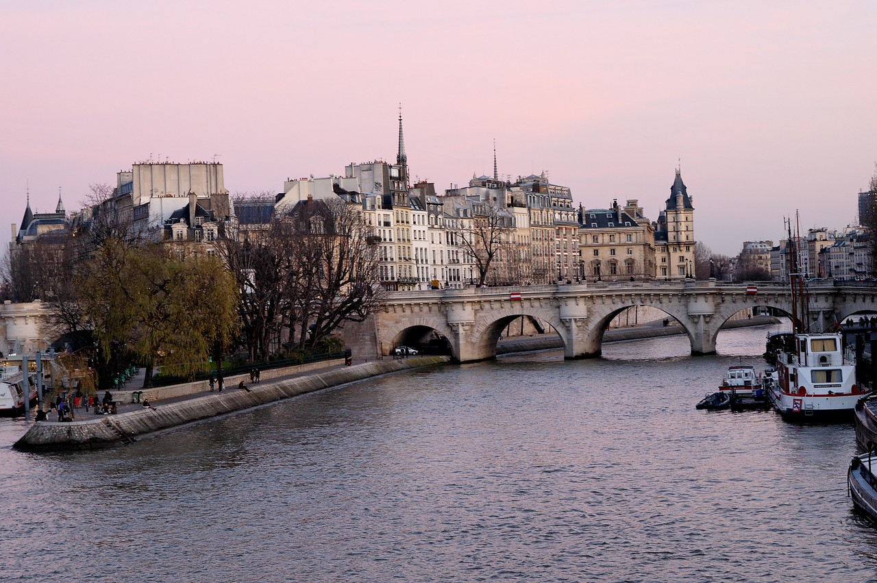 "This is the ""Ile de la cite"", viewed from the ""pont des arts"". The bridge is the ""pont neuf"" (which means new bridge) and is in fact one of the oldest (if not the oldest) bridge of Paris)."