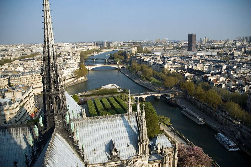 View from the south tower of Notre Dame de Paris