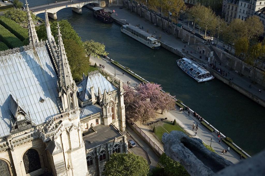Le jardin de Notre Dame de Paris pris depuis le haut de la tour sud.