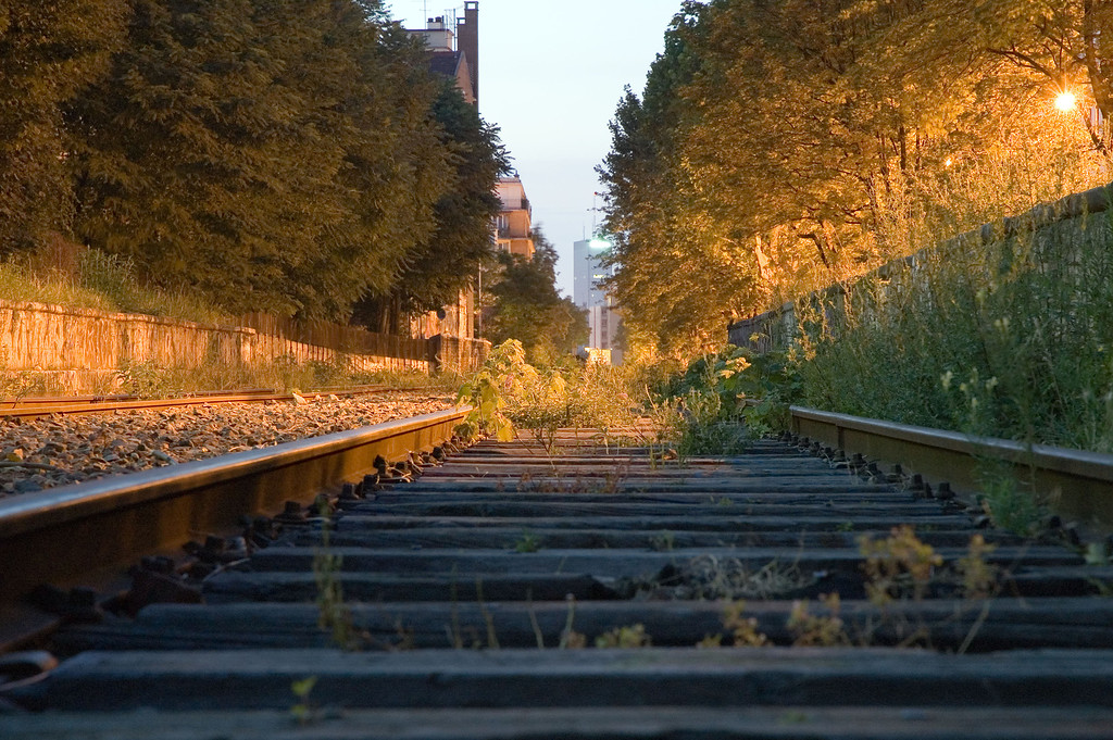 "A view of the ""Petite ceinture"" (litterally the ""small belt""). This used to be a train going circling around paris. It is not used anymore and is left unattended."
