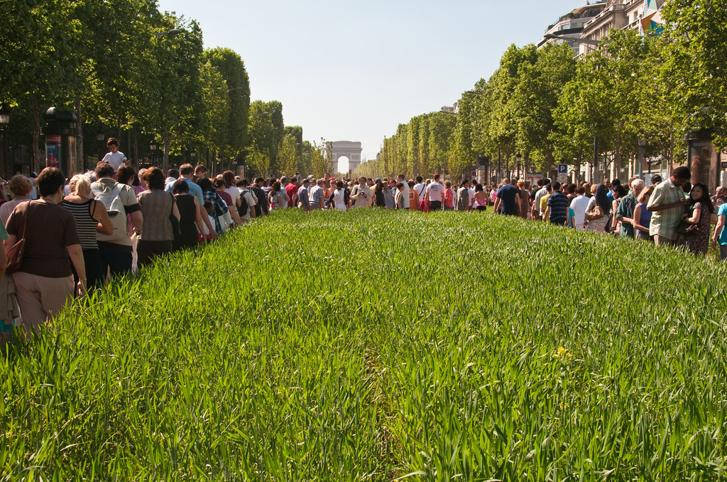 The champs elysees covered with wheat and other plants for an agricultural event on may 23 2010.<br /> champs elysees paris, France.