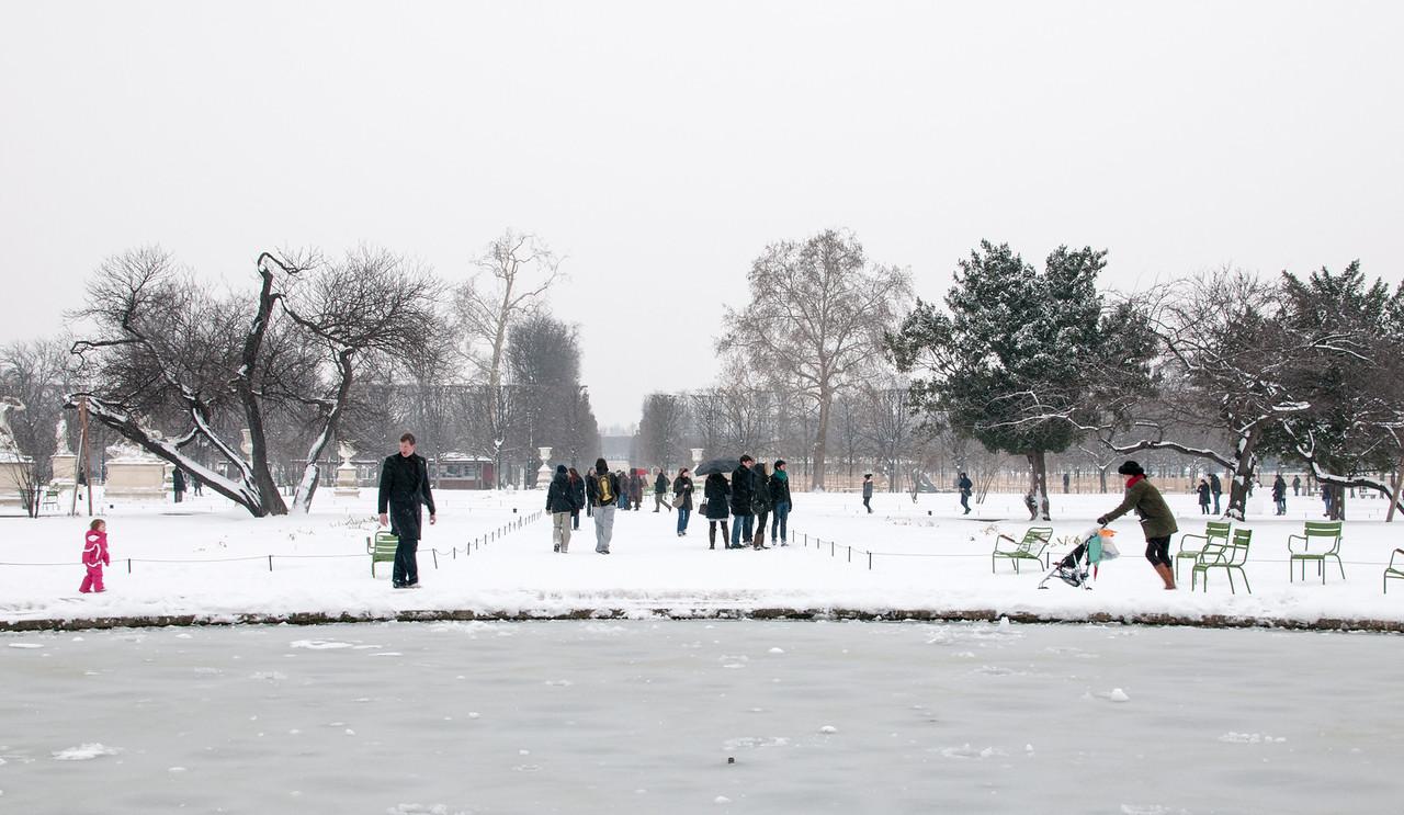 Jardin des tuileries gelé