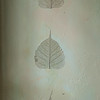 Les feuilles de peuplier d'Annie Chazotte