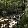 La rivière : La Gourbe
