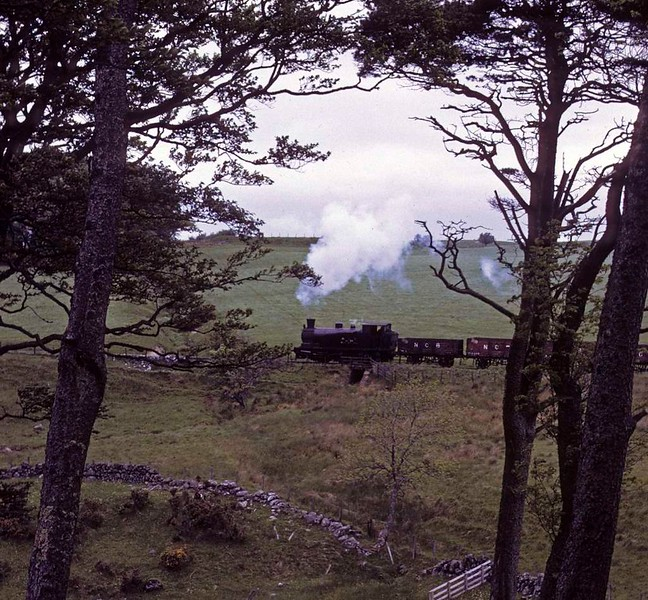 National Coal Board West Ayr Area 0-6-0T No 24, Waterside, June 1973. On its way to Dunaskin with loaded wagons from Minnivey colliery.   Photo by Les Tindall.