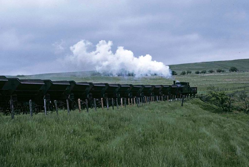 National Coal Board West Ayr Area 0-6-0T No 24, Waterside, June 1973.  Returning to Minnivey with empty spoil wagons.   Photo by Les Tindall.