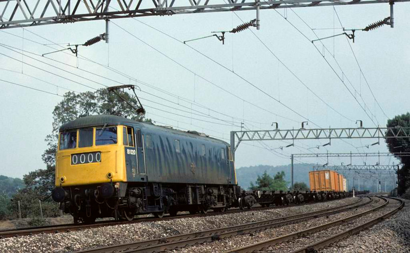 81020, near Whitehouse Junction, 31 August 1976.  A very lightly loaded Freightliner onthe down fast towards Stafford.  The loco was scrapped in 1991. Photo by Les Tindall.
