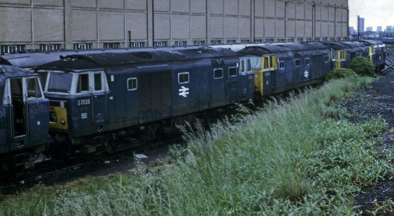 D7034, D7036 and three other Hymeks awaiting scrapping, Old Oak Common, 18 June 1972.  Photo by Les Tindall.