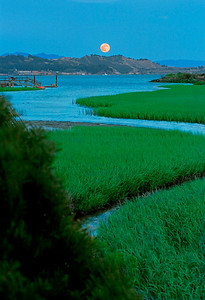 "Moonrise at the Loch Lomond Marina made a perfect book cover for my ""Hidden Treasures of San Francisco Bay."" Moonlight and magic hour combined to make this image."
