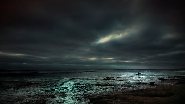 The Surfer I