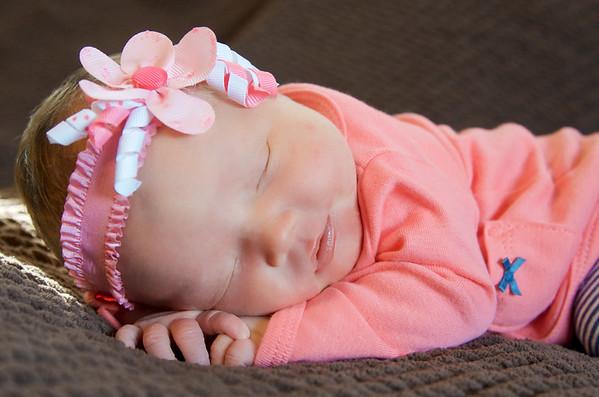 Bella Mia Newborn Session