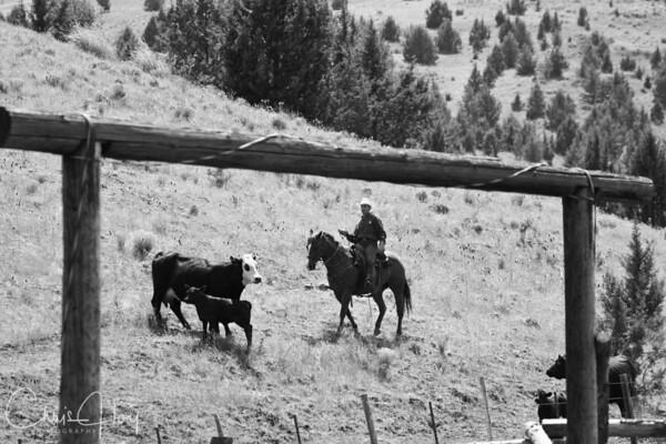 Wilson Ranch, Fossil, Oregon