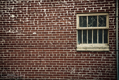 Into the bricks
