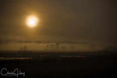 Fog at Ridgefield National Wildlife Refuge