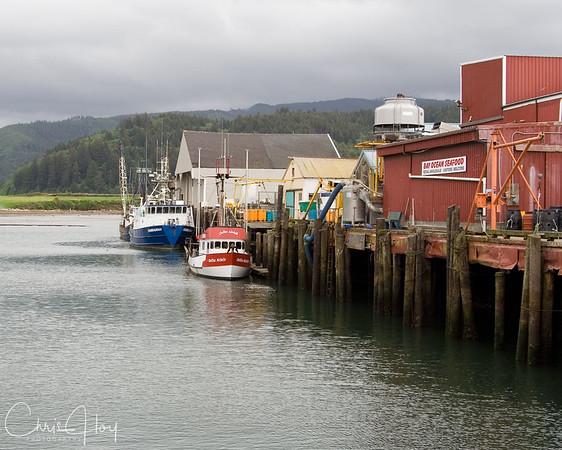 Docks at Garibaldi