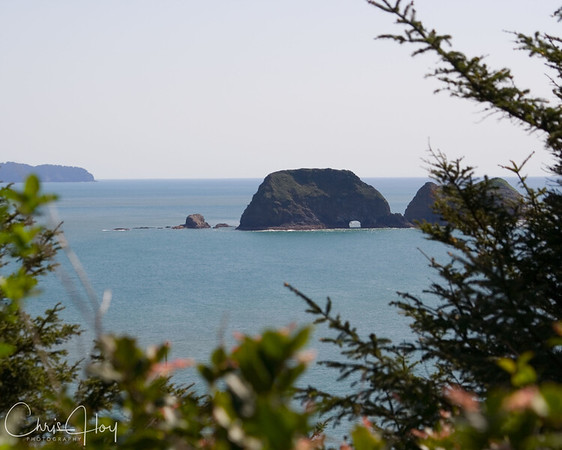 Three Arch Rocks as seen from Cape Meares Lighthouse on the Beautiful Oregon Coast