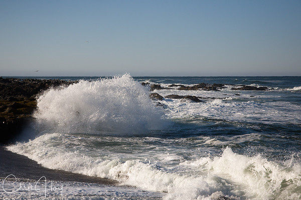 Big Wave, Yachats, Oregon