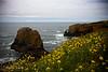 Yaquina Head, Oregon Coast