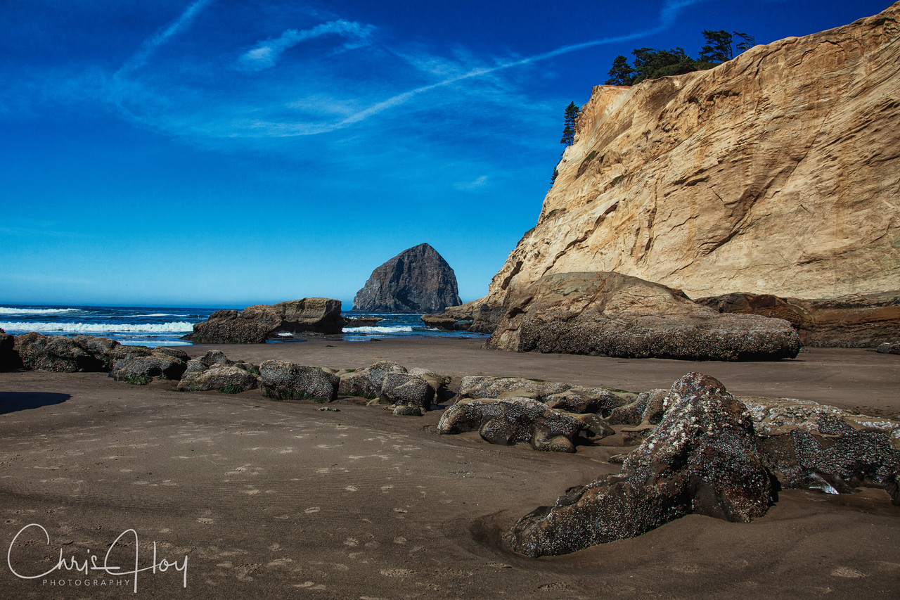 IMAGE: http://www.capturedimaginings.com/Level-One/Newly-Added/i-x8P9K6p/1/X2/Haystack%20Rock-X2.jpg