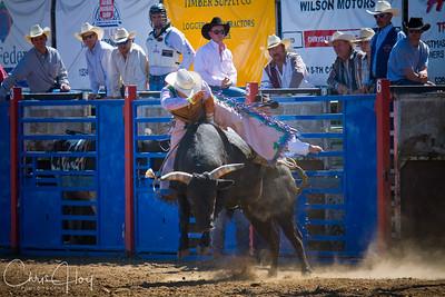 Philomath Frolic & Rodeo 2008