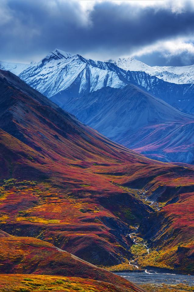 Alaska Range II, Denali National Park, Alaska
