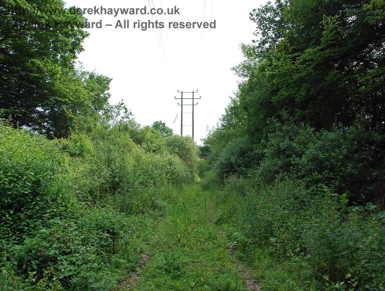 The path improves again after the bridge but is muddy.  The author Michael Welch, visiting just over 10 years ago, described it as a quagmire, and I can see his point.