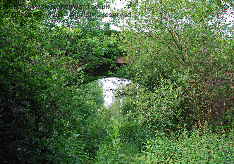 After negotiating a jungle the single span Brickyard Farm Accommodation Bridge appears, this view looking north.  The power lines go above the bridge on higher poles.  There were two accommodation bridges at Brickyard Farm but the second more northerly three arch bridge has been demolished.