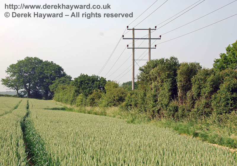 Turning round and looking north the power lines can be seen established within the trees on the trackbed.