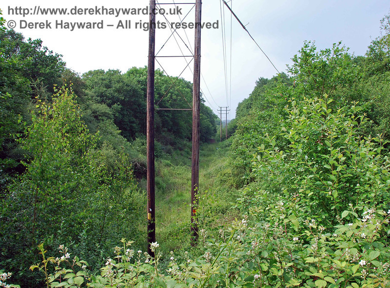 Turning round, this view looks north along the cutting from the top of the filled in bridge (see next picture).
