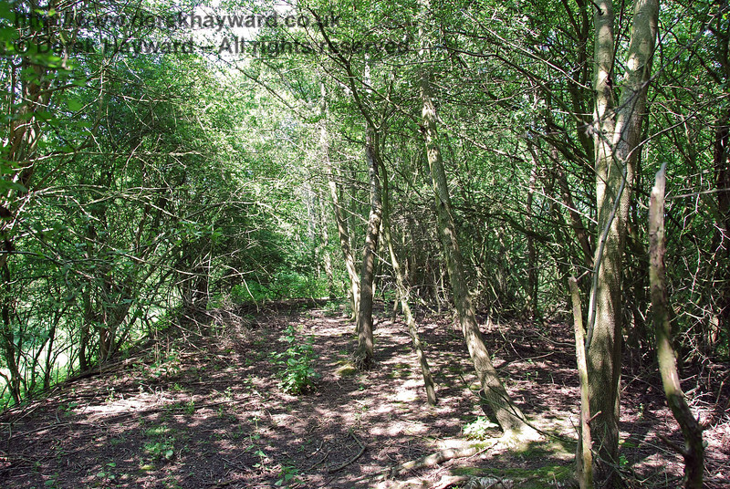 Unfortunately it is not possible to progress far, and after about 50 metres the embankment becomes clogged with brambles and nettles to the degree that it is impassable.