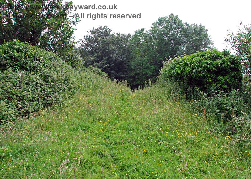 An old cattle creep south of Cinder Farm is fairly clear on the top, but there is a pronounced hump over the bridge suggesting a substantial depth of ballast either side of the bridge when the railway was in situ.  This view looks south over the hump.  The bushes either side actually conceal the parapet.
