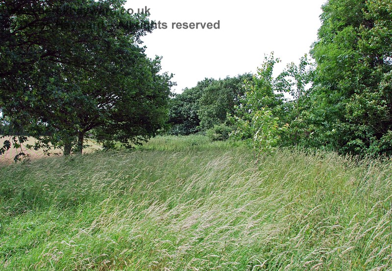 As the ownership of the land changes the embankment becomes heavily overgrown and no access is available.  This view looks north towards the first overbridge south of Barcombe (out of sight in the trees).
