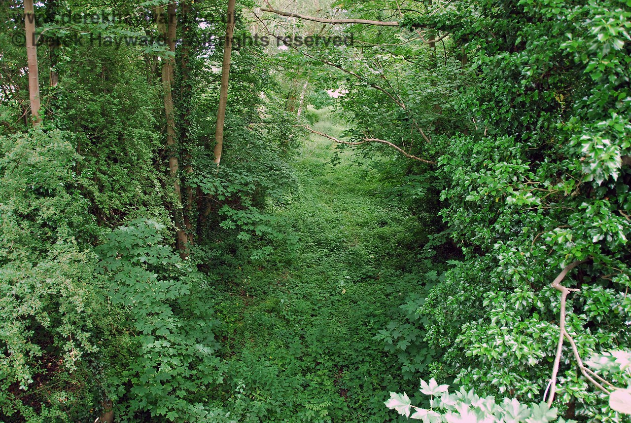 A well-known picture by Michael Welch, taken about 1994, shows the cutting leading up to the bridge with a long surviving garden shed (that featured in many photos taken at this location).  Sadly the shed seems to have disappeared and it was not possible to gain access to the cutting to reproduce the view.  I had to content myself with this picture from the top of the bridge looking south east.  It can be seen that the area is now slightly overgrown.