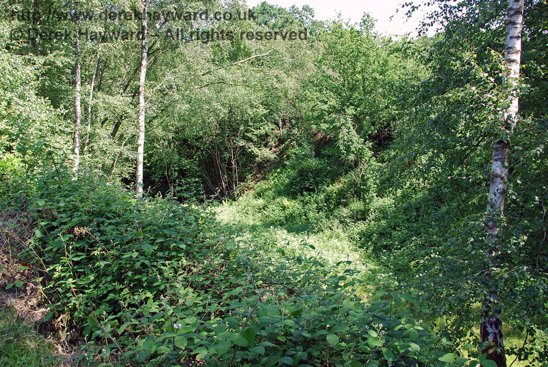 The course of the line reappears north of Newick and Chailey, but it was not possible to access the cutting owing to undergrowth and flooding in the base of the cutting.  This view looks north down into the cutting.