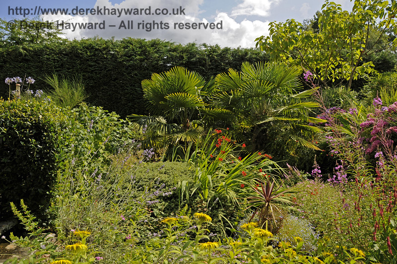 More of the lovely landscaped garden at Newick & Chailey. 28.07.2014 11376