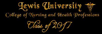 Lewis Univ. College of Nursing Grad Party 2017