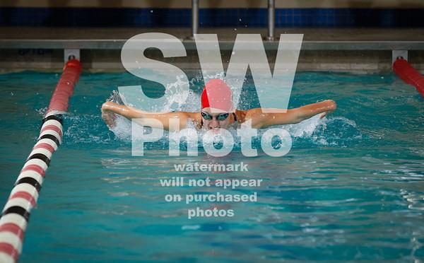 2012-13 Lewis Swim Teams
