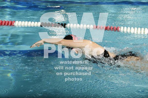 2013-14 Lewis Swim Team Action