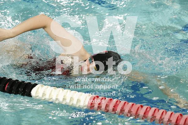 2014-15 Lewis Swim Team Action