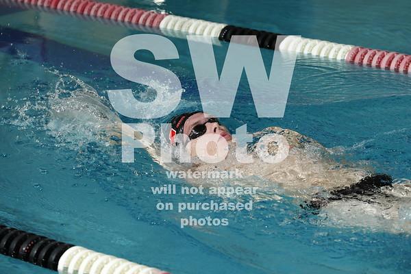 2017-18 Lewis Swim Teams action