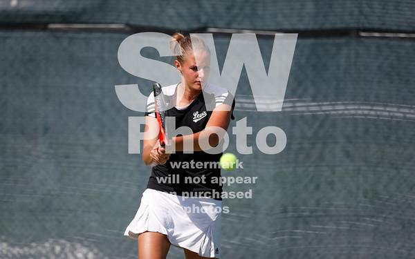 2013-14 Lewis Tennis Teams