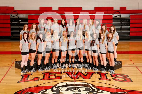 2014 Lewis Women's Volleyball Team