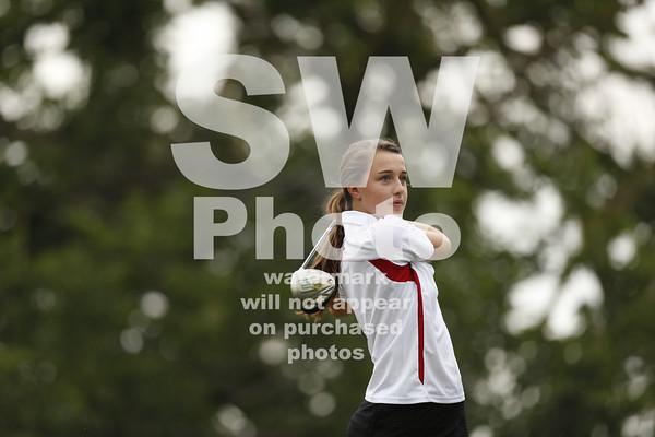 2013-14 Lewis Women's Golf Action