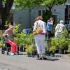 The 2014 Garden Festival in Lewiston, NY