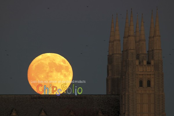 Super Moon over the Basilica