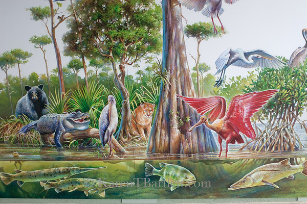 8834 Big Cypress Swamp Welcome Center mural
