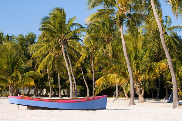 7000 Coconut plantation, Islamorada