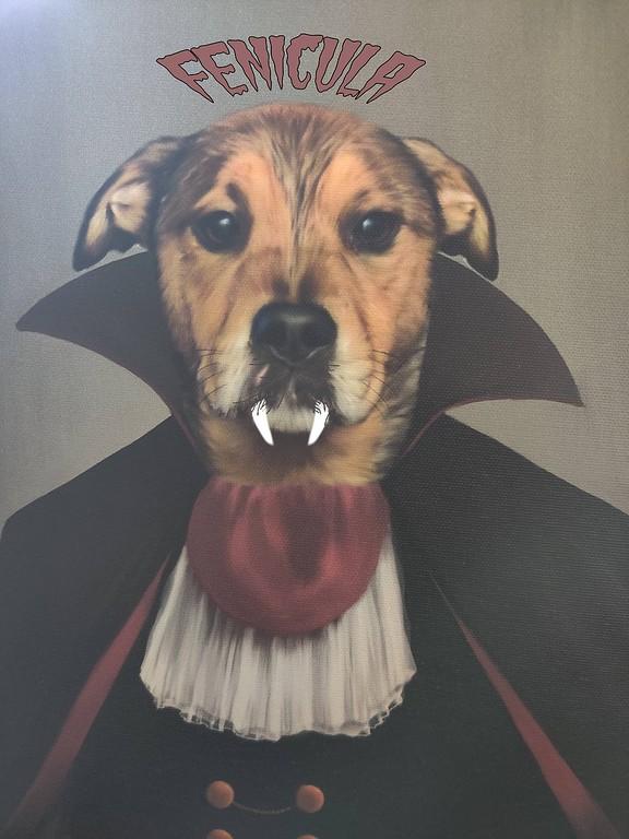 Fenicula the Vampire Dog