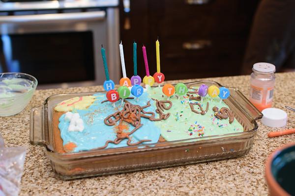 Erik's 5th Birthday 2016