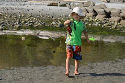 Crab hunting.